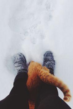 snow day | lynnaseipel.vsco.co | VSCOgrid