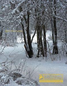 Al Flaherty's Outdoor Store: Winter