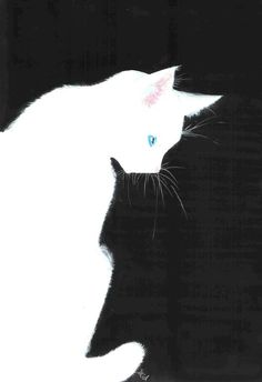 """the opposite to """"Black Cat"""" but i still like the black one more, coz i like black T.T the scanner didn't pick up the sligh grey shades i did on the white fur Aug 30 2016:I've decided to put s..."""