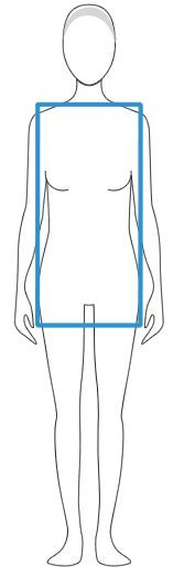 column body shape