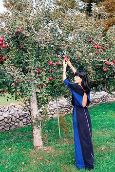 This amazing orchard is totally swoon-worthy!