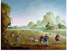 An agricultural society:  94 percent of the population lived on the land or in small villages or towns. Most people were peasants who farmed the land. Tea was an important crop in china. Peasants grew tea on their farms to sell at the market.