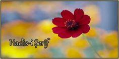 ilahirahmet - islami Dua Sitesi islami dua sitesi Allah, Sd, Floral, Instagram, Projects, Flowers, God, Allah Islam