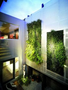 Urban Home Architecture with Greenery Decor.  The green wall can act as a green light filter to create a more pleasant environment.