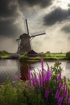 Just look the Netherlands ! I have been here to kinderdijk and just loved it, they offer a boat ride and you travel down the water way and get to see all of these wonderful windmills. Scenic setting in Kinderdijk, Netherlands Places To Travel, Places To See, Places Around The World, Around The Worlds, Wonderful Places, Beautiful Places, Le Moulin, Belle Photo, Beautiful Landscapes