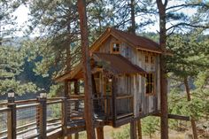 Great Rustic Garage and Shed Design for Tree Houses to Live in Decorated with Small Home Shaped Made from Wooden Material