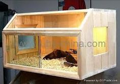 home made vivarium - Google Search