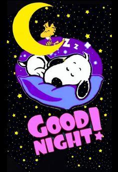 Good Night Cat, Cute Good Night, Good Night Sweet Dreams, Good Night Image, Snoopy Love, Snoopy And Woodstock, Snoopy Images, Snoopy Pictures, Good Night Greetings