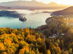 Foggy and misty sunrise in Bled lake at fall,Slovenia. Slovenia Travel, Wallpaper Backgrounds, Wallpapers, Travel Images, Aerial Photography, Sunrise, River, Fall, Outdoor