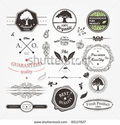 Vector Set Calligraphic Design Elements And Page Decoration Premium Quality Natural Product Label
