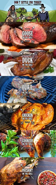 Don't settle for turkey! These are six other birds you can grill for a Thanksgiving Feast.snip.ly/tvcap. With these six options, you will be able to spice up Thanksgiving this year and leave your family stuffed and impressed with your grilling.