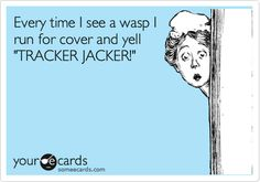Funny Cry for Help Ecard: Every time I see a wasp I run for cover and yell 'TRACKER JACKER!' #hungergames www.flappybirds.co.uk