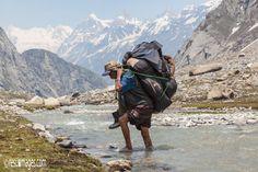 Porter - Himalaya, India