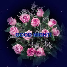 Lovely Good Night, Good Night Sweet Dreams, Good Night Messages, Good Night Quotes, Laku Noc, Online Image Editor, Happy Birthday Messages, Morning Images, Love And Light