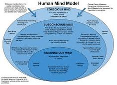Image result for seven stages of consciousness
