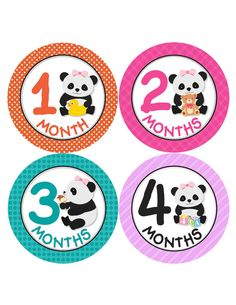Month Baby Sticker Baby Girl Monthly Stickers by BuddhaBellies