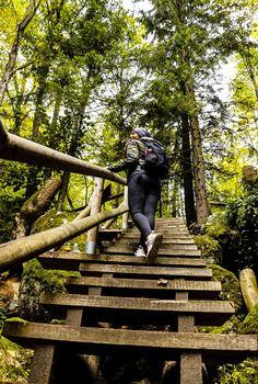 Ysperklamm - Ein besonderes Ausflugsziel in Niederösterreich! Wanderlust Travel, Outdoor Furniture, Outdoor Decor, Where To Go, Amazing Photography, World, Traveling, Pictures, Road Trip Destinations