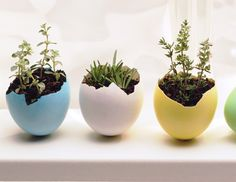Want a new way to use decorated eggs? Click here for inspiration!