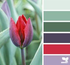 tulip hues: pastel gray green, sage green, evergreen, plum purple, raspberry red, wisteria purple