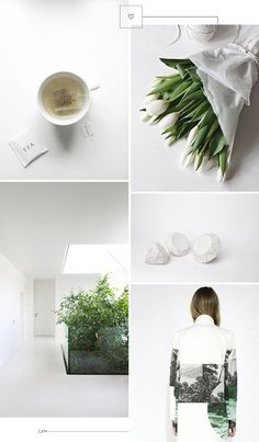 white and green interiors #plants #inspiration