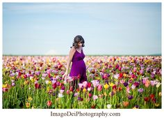 Imago Dei Photography: Maternity // In full bloom at the Wooden Shoe Tulip Festival