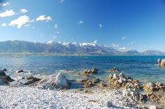 New Zealand, Kaikoura, South Island..a travel agent actually told me this wasn't anything special to see..glad I didn't listen...most beautiful place I have laid my eyes on