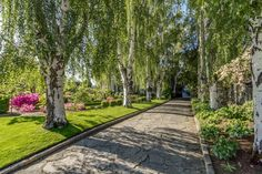 The grand entrance to the historic masterpiece includes a flagstone driveway surrounded by trees and beautiful, well-manicured landscape. Landscaping Around House, Home Landscaping, Landscaping Company, Tropical Landscaping, Landscaping Contractors, Landscaping Software Free, Lush Lawn, Long Driveways, Landscape Design Plans