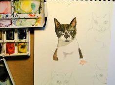 Estudo sobre gato