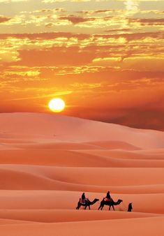 15 - 1 (7) | par intnvs@rocketmail.com Desert Life, Desert Sunset, Beautiful World, Beautiful Places, Beautiful Pictures, Ed Wallpaper, Desert Aesthetic, Deserts Of The World, Desert Photography