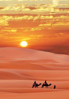 15 - 1 (7) | par intnvs@rocketmail.com Desert Photography, Aesthetic Photography Nature, Landscape Photography, Beautiful World, Beautiful Places, Beautiful Pictures, Ed Wallpaper, Desert Aesthetic, Deserts Of The World