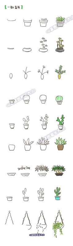 Videos group of potted plants, PDA creative! (Cool Crafts Videos)