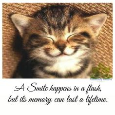 Smile happens in a flash