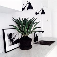 Beautiful wall decoration with a phot album & wall light and top of the basin has a flower vase. It's a modern and classic interior room decoration idea. http://www.urbanroad.com.au/