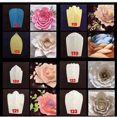 """731 Likes, 46 Comments - Danielle Gonzales (@backdropinabox) on Instagram: """"Hey guys !!!! Here are the some of my templates that make these beautiful flower styles FALL KICK…"""""""
