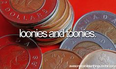 awesome canadian things // coins -- loonies (one dollar) and toonies (two dollars)