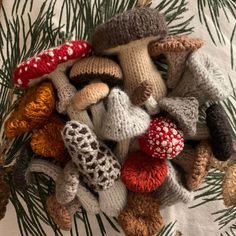 Close-up of some of the shrooms I knitted to decorate our tree this year :) - mycology Knitting Projects, Crochet Projects, Knitting Patterns, Craft Projects, Crochet Patterns, Cute Crochet, Crochet Crafts, Knit Crochet, Crochet Crop Top