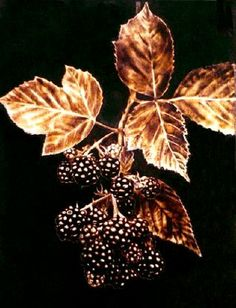 Kathleen art pyrography   Dino Muradian: Varied Themes