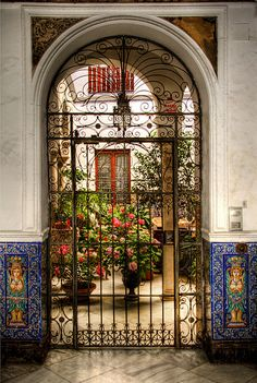 Patio del barrio de Santa Cruz. Sevilla.