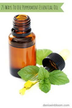 25 Ways To Use Peppermint Essential Oil. Peppermint essential oil is one of the best essential oils you should have in your medicine kit. Essential Oils For Pain, Essential Oil Uses, Young Living Essential Oils, Peppermint Oil For Mice, Peppermint Cake, Herbal Remedies, Home Remedies, Sinus Remedies, Thinning Edges