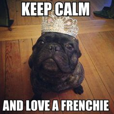 Keep Calm and Love a Frenchie.