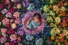 Luisa Dunn Photography - Timeline