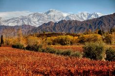 The Andes out your window in Mendoza Argentina