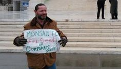 Supreme Court sympathizes with monsanto in seed patent case. Read More Here: http://fooddemocracynow.org/blog/2013/feb/21/supreme_court_sympathizes_with_monsanto/