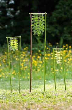 Richard Shilling - 3 Framed Rowans / repinned on Toby Designs