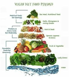 plant based protein sources   plant based protein, protein chart and