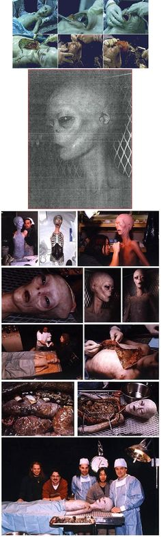 """""""THE ABOVE IMAGE IS A PHOTO OF J-ROD THE INSECTOID WHO IS IN SOME KIND OF SPHERE AT AREA 51……"""" --- Also: http://www.ufowatchdog.com/jrod.htm"""