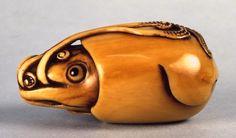 Squid: ivory, Shigemasa