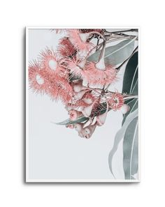 Abstract Poppies No 3 Framed Wall Art, Wall Art Prints, Poster Prints, Posters, Peony Print, Plant Art, Australian Art, Detail Art, Modern Prints