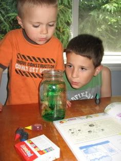 Lapbooks & Unit studies for Boys.  Snakes, Snails, and Puppy Dog Tails « Homeschool Share blog