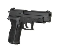 Sig Sauer P226 9mm | It's pricey but well worth it. Ive had mine since the '90's n its still my favorite